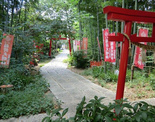 8月24日(2012) 八重垣稲荷神社の参道(小金井市)