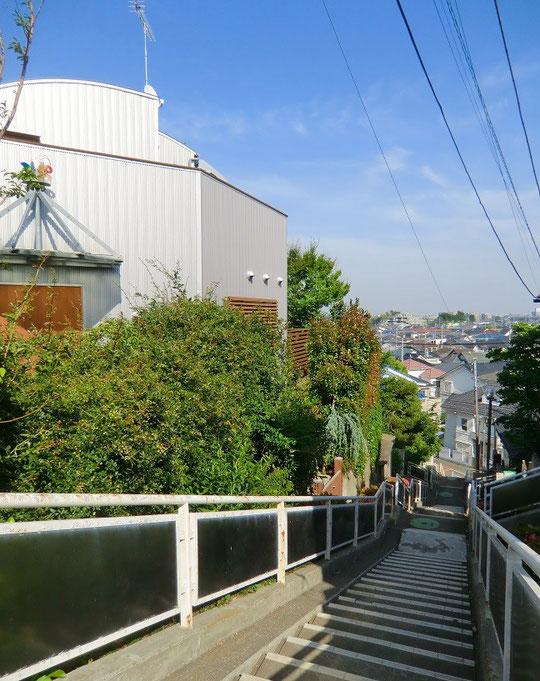 5月30日(2014) 坂の上から:国分寺崖線にある階段の上から(国分寺市)