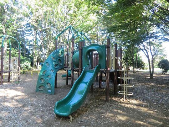 8月28日(2012) 滑り台 神代植物公園:自由広場の近く(調布市)