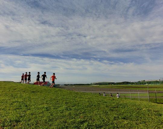 7月2日(2015)朝のトレーニング:6月28日の早朝、武蔵野の森公園・展望の丘にて