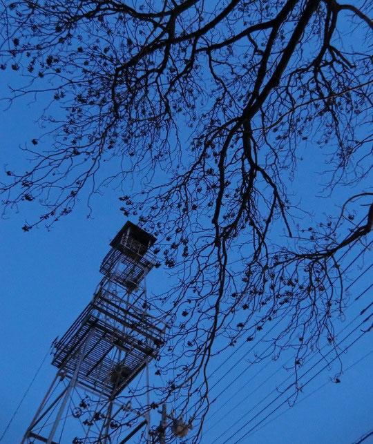 3月6日(2013) 国際基督教大学そばにある火の見やぐら(三鷹市文化財登録)最上部の望楼には大きな半鐘がある
