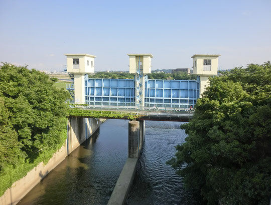 5月28日(2017)多摩川サイクリングロード:稲城大橋の府中側から北多摩1号水門を見た眺め。水門の手前がサイクリングロードになっています。水再生センターで処理された水が多摩川に流れて行く場所です