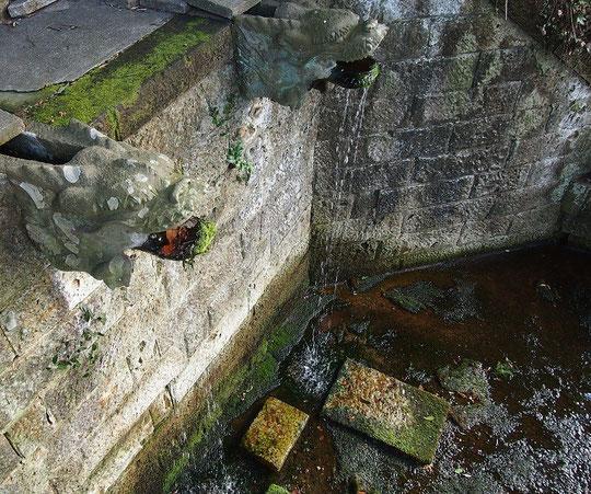 2月18日(2016) 深大寺不動滝:龍の口から湧水が流れ落ちている場所。東京都の名湧水57選