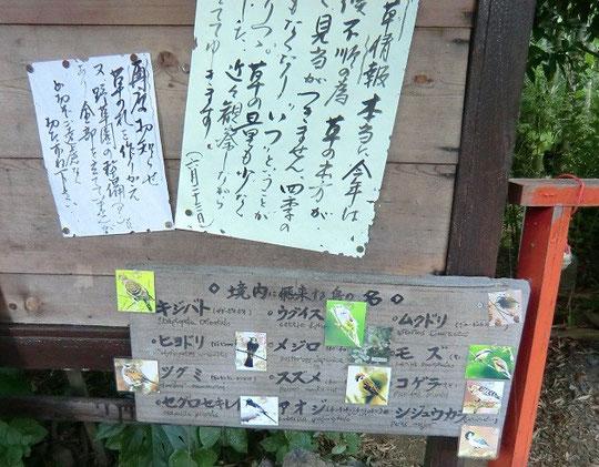 野鳥や野草についての案内板