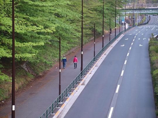 4月14日(2020)早朝散歩:緊急事態宣言を受け、出来るだけ人に接触しない時間や場所を選んで運動をしている人のようです。撮影者も同様です。