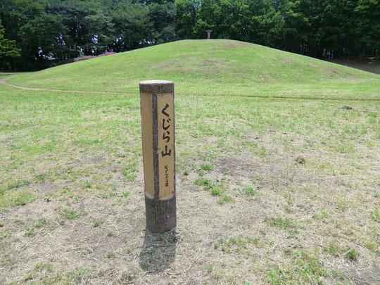 くじら山(武蔵野公園内)