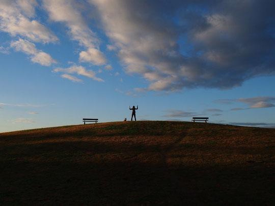 12月12日(2014) 朝のシルエット:11月27日、武蔵野の森公園にて