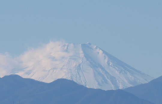 1月3日(2019)真っ白な富士山:初冠雪が昨年の9月26日、初化粧が10月15日という記録がありますが、年が明けてすっかり雪におおわれた富士山です。国分寺崖線の上、天文台の近くから