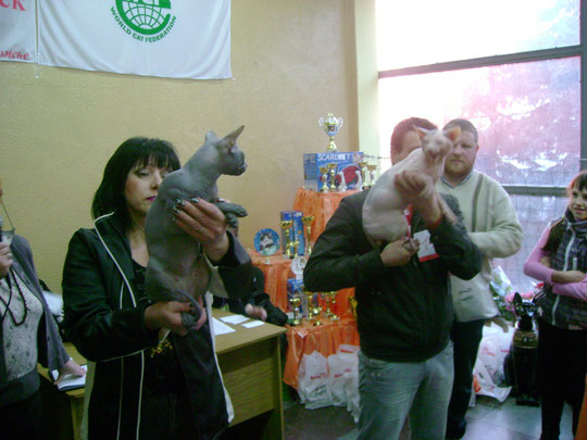 19 и 20 марта участвовали на выставке кошек в нашем городе Запорожье!!!