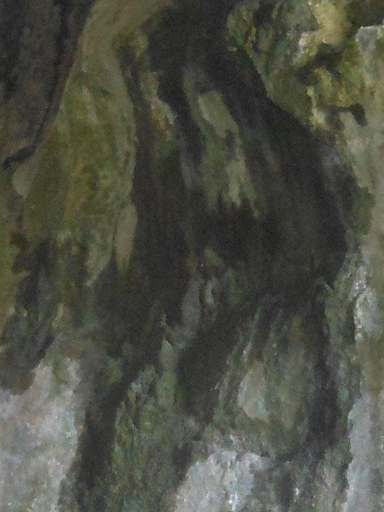 Vierge noire sur une paroie