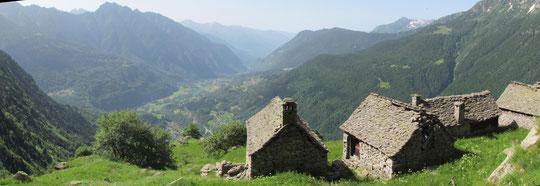 Alpe Suzzo basso