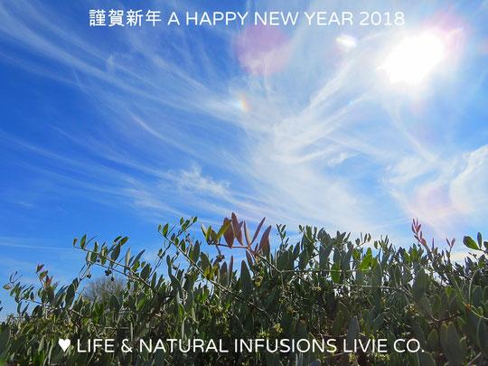 ♡ 謹賀新年  A HAPPY NEW YEAR 2018