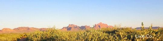 ♡ 古代ホホカム族が定住農業をしていたと云われる広大な大地アリゾナ州*ハクアハラヴァレー(*先住民命名: 水高く湧き出流大地・鉱泉地)政府の環境保護区域側のイーグルテール山の麓でアリゾナ州原産神秘の植物 原種ホホバ(純粋種Sayuri原種ホホバ)は褐藻のオーガニック肥料にて栽培しています