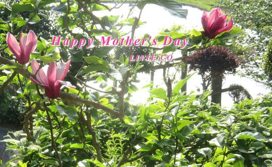 母の日 Happy Mother's Day♪