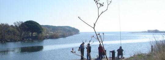 L'embouchure du Reyran et de l'Argens