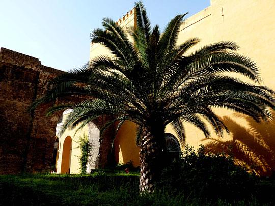 Photographie, Andalousie, Séville, palais, Alcazar, patio, jardin, muraille, porte maure, couleurs, art, architecture, voyage, vacances, Mathieu Guillochon