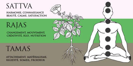 https://yoga-et-vedas.com/3-trois-gunas-qualites