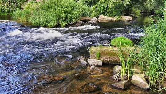 Gewässerführungen