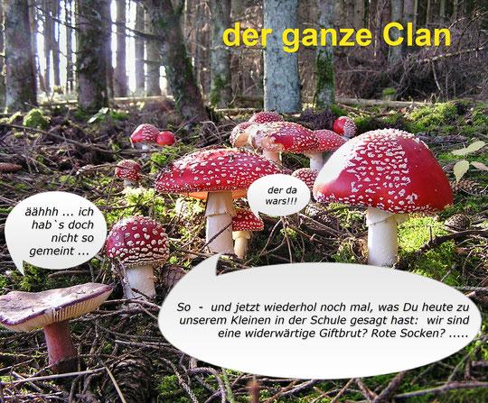 Pilze im Spessart
