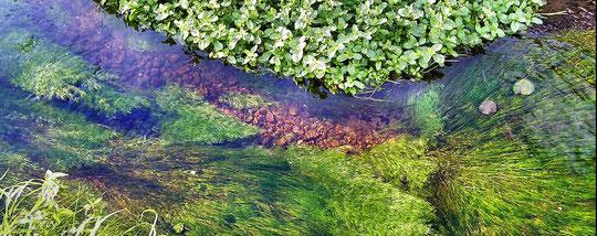 Gewässer im Spessart