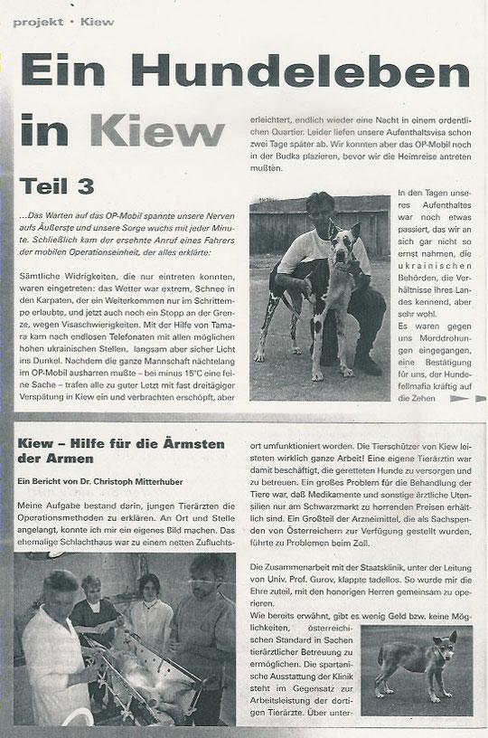 Ein Hundeleben in Kiew III (Teil 1)