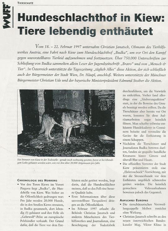 Hundeschlachthof in Kiew (Teil 1)
