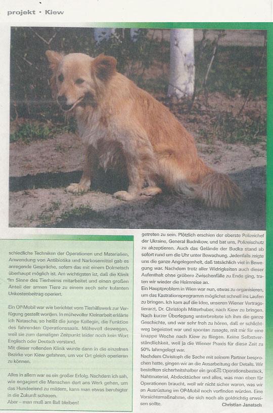 Ein Hundeleben in Kiew III (Teil 2)