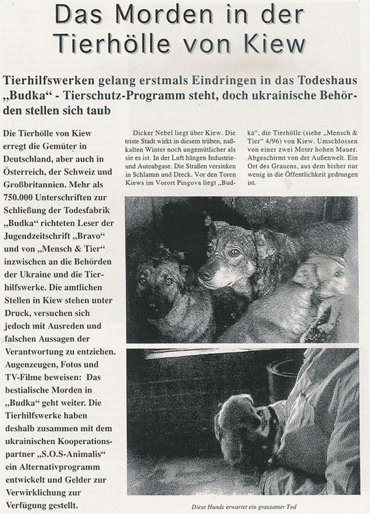 Das Morden in der Tierhölle von Kiew (Teil 1)