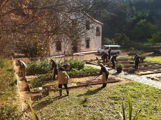 Foto de: Ángel Hernansáez (Grupo huerto lunes 07.02.2011)