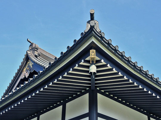 Eko Haus Detail