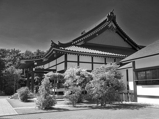 Eko Haus II