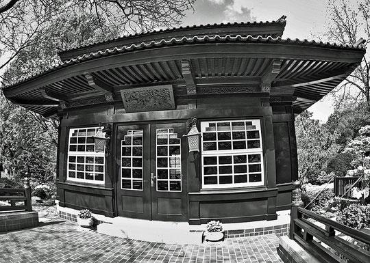 Japanischer Garten Leverkusen II
