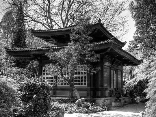 Japanischer Garten Leverkusen I
