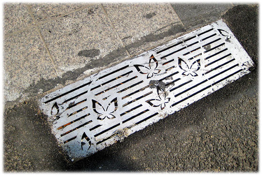 This photo is about butterflys on a metallic grid in the pavement at a street. Foto von Schmetterlingen auf einem metallischen Abflussgitter in dem Gehsteig und den Straßen von Seoul