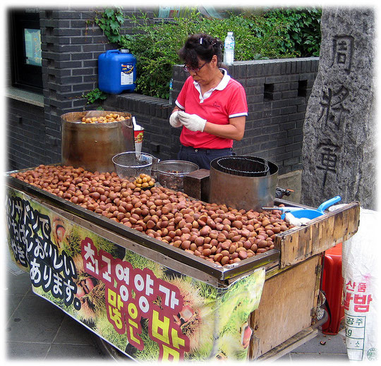 Picture of Roasted chestnuts - A photo of a typicall Korean street food snack and imbiss - Bild von gerösteten Nüssen auf der Straße in Seoul