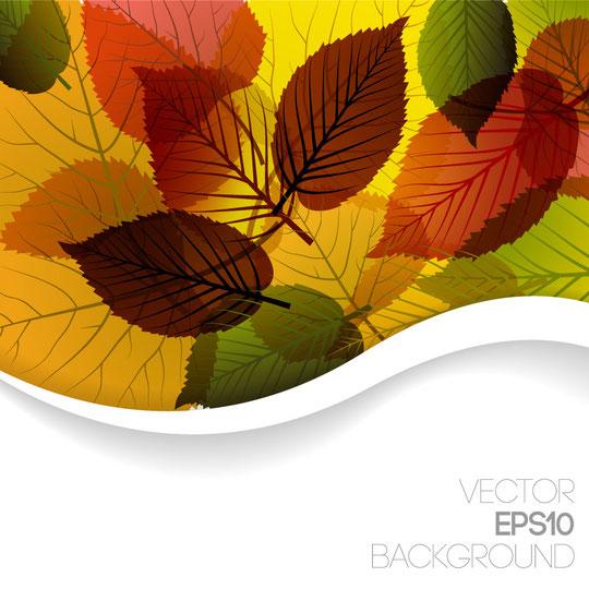 秋の紅葉をデザインした背景 AUTUMN LEAVES DESIGN VECTOR