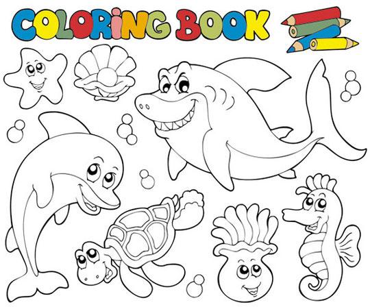 海の生き物の塗り絵 Coloring book vector
