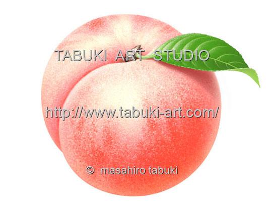 白桃 RD13516