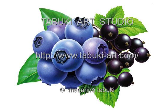 ブルーベリーイラスト Blueberry くだもの 果物 レンタルイラスト ストック パッケージイラスト