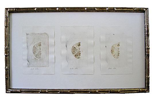 2003-09-0153.jpg