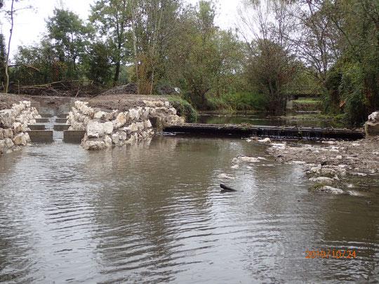 Fonctionnement de la rivière de contournement avec un débit de la Tude de 50l/s