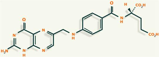 acido folico estructura
