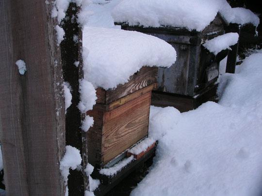 repos hivernal bien mérité