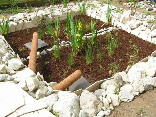 jardi-assainissement