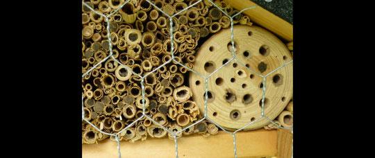 Ausschnittsvergrößerung eines Insektenhotels in Berg. Gladbach / Moitzfeld
