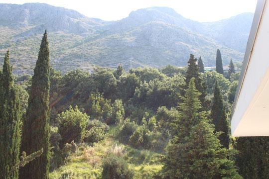 Der Blick auf die Bergseite.