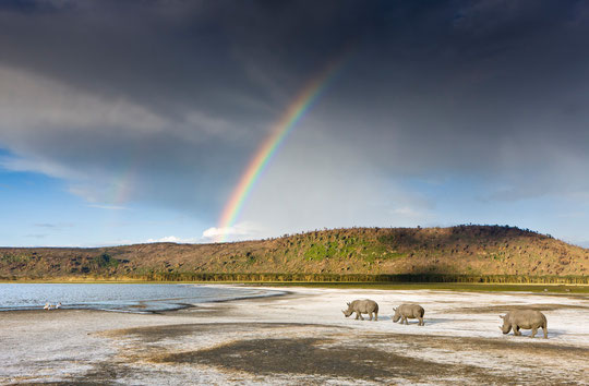 © WWF Presse