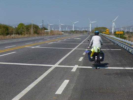 Gigantesque parc d'éoliennes