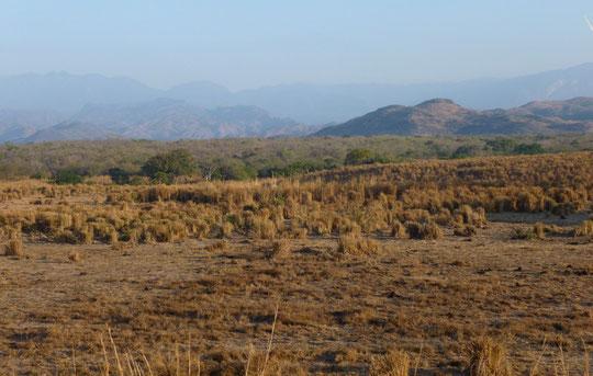 Paysage dans la région de Juchitan