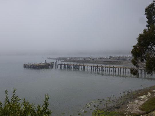 Brouillard sur Bodega bay